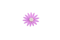 Filz-Blumen