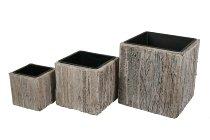 bark stripe-plater cube, S/3