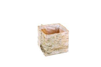 birch bark planter, cube