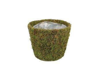 moss planter,round, 10x12,5cm