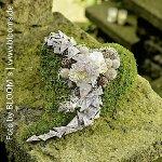 moss heart planter,9x25x38cm