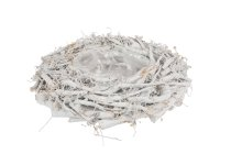 cotton root planter, round, bellied