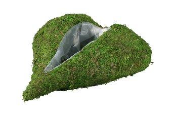 moss heart planter,oblongness