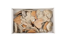 birch hearts, 60pcs/box