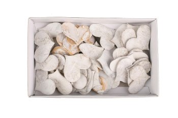 birch hearts, wide, 48pcs/box