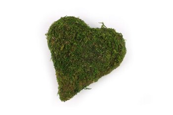 moss heart pointed 10,5x12 cm