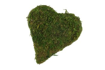 moss heart pointed 15x15 cm