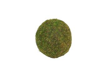 moss ball,10cm