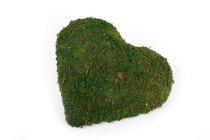 half moss heart,15cm
