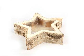 birch planter star with wooden rim