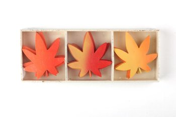 wooden leaves in wooden box